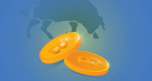 Bitcoin growth or bull market concept: Two vector gold coins with bitcoin signs, bull silhouette and growth graph on a background.