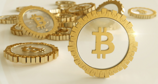 Die Winklevoss Brüder sehen Bitcoin bei 7 Billionen … irgendwann