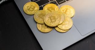 Bärenmarkt überwunden? Cryptocoins gewinnen, EOS explodiert
