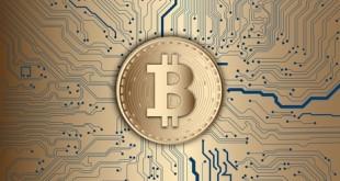 Illustration Bitcoin, Money, Golden Bitcoin, currency