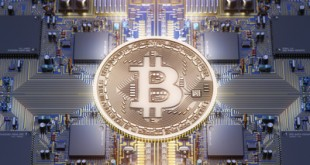 Bitcoin gold coin digital currency with circuit board background
